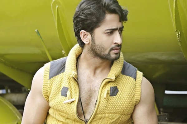 Shaheer Sheikh: I Am Ready To Get Married
