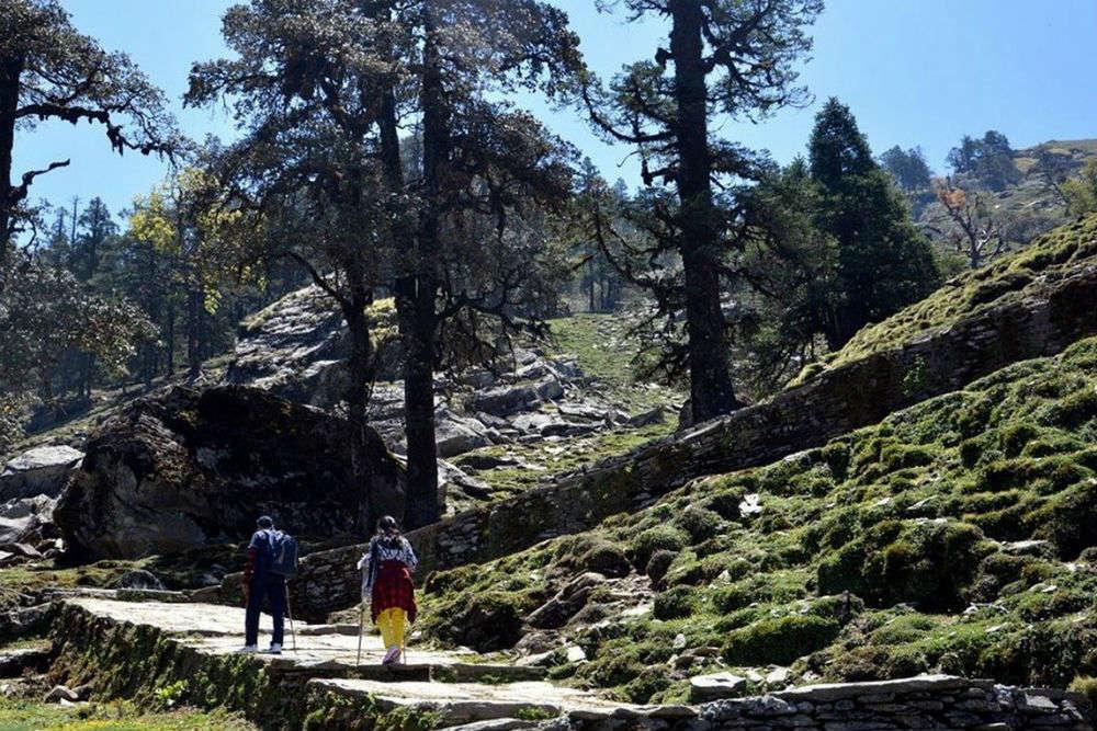Chopta-Chandrashila trek
