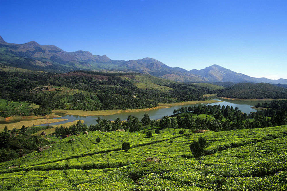 Wonderful places to visit near Munnar