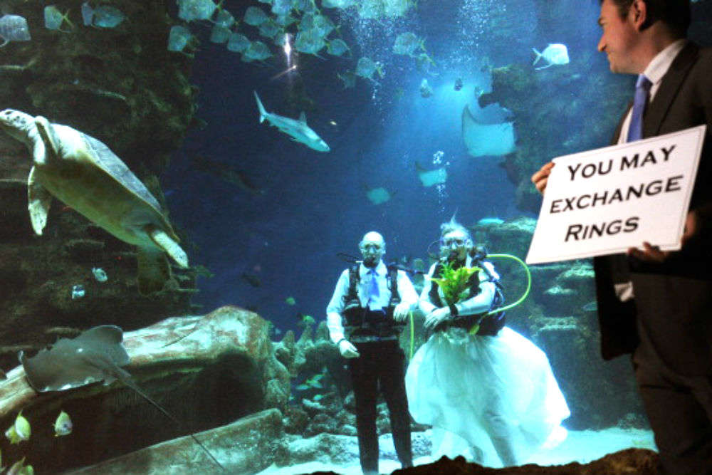 Where and how to get married underwater!