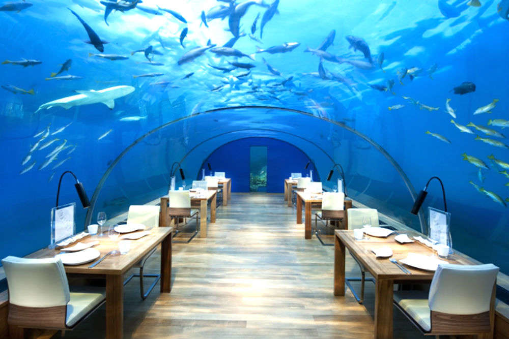 Craziest dinner ideas and venues