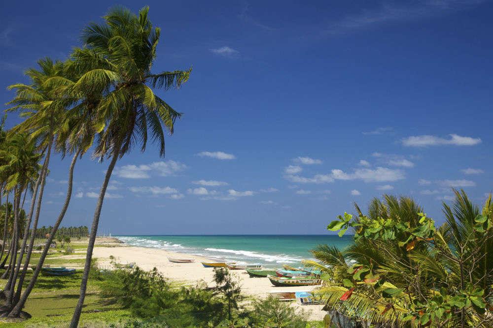 Nilaveli Beach—northern splendour