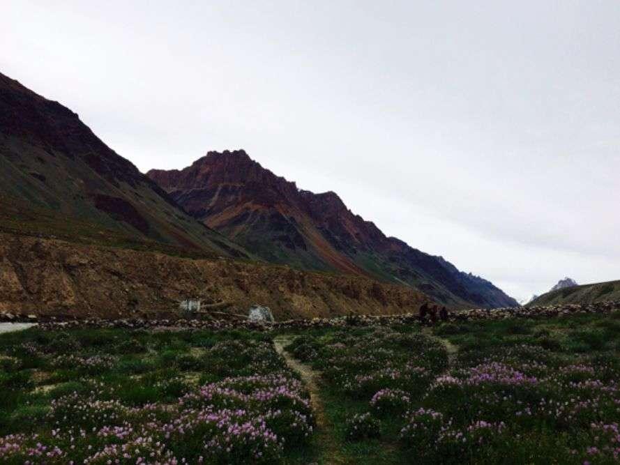 Sham Valley trek