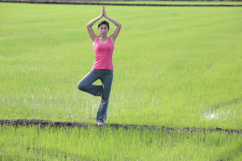 Practise Yoga in the paddy fields