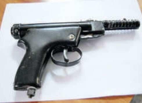 Government makes licence mandatory for air guns | India News