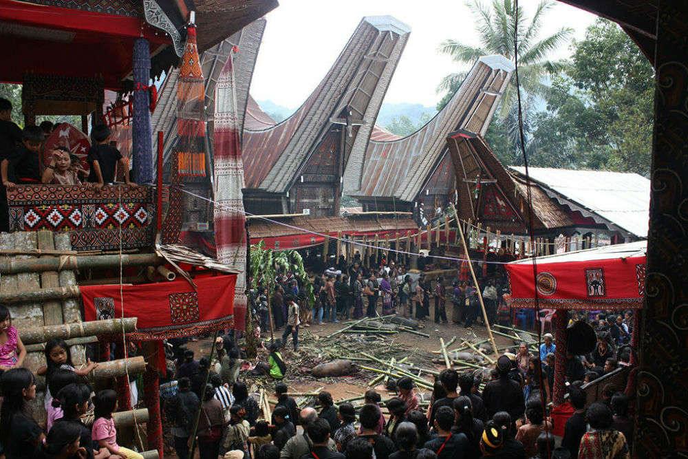 Torajan Funeral Ceremony, Sulawesi