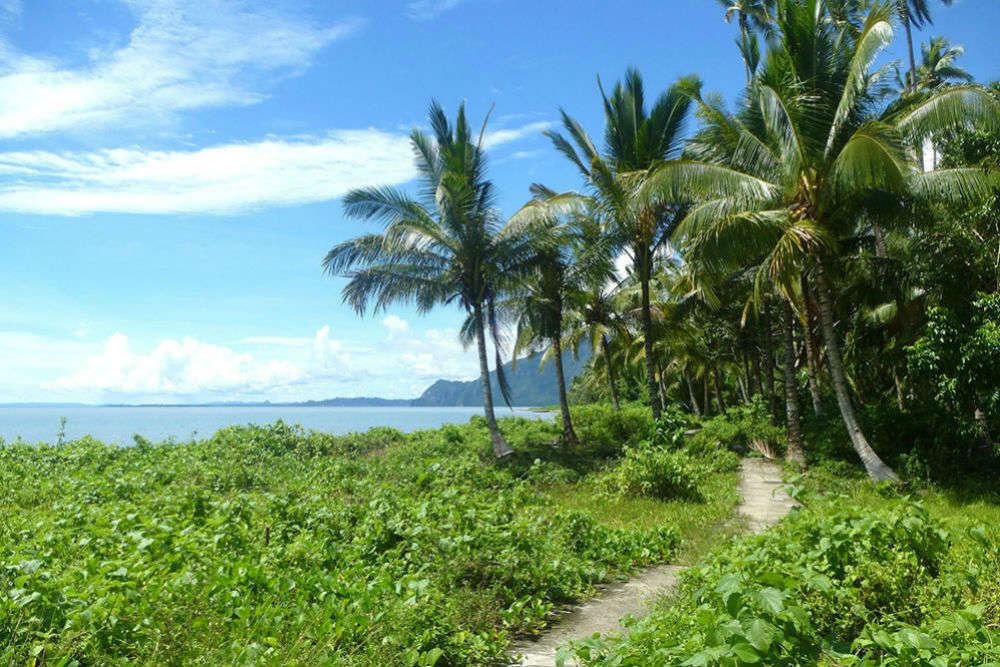 Manusela National Park, Seram Island, Maluku