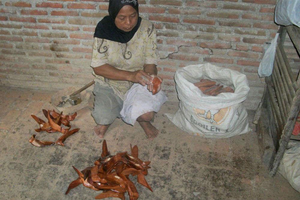 Banyusumurup Traditional Village, Imogiri, Yogyakarta