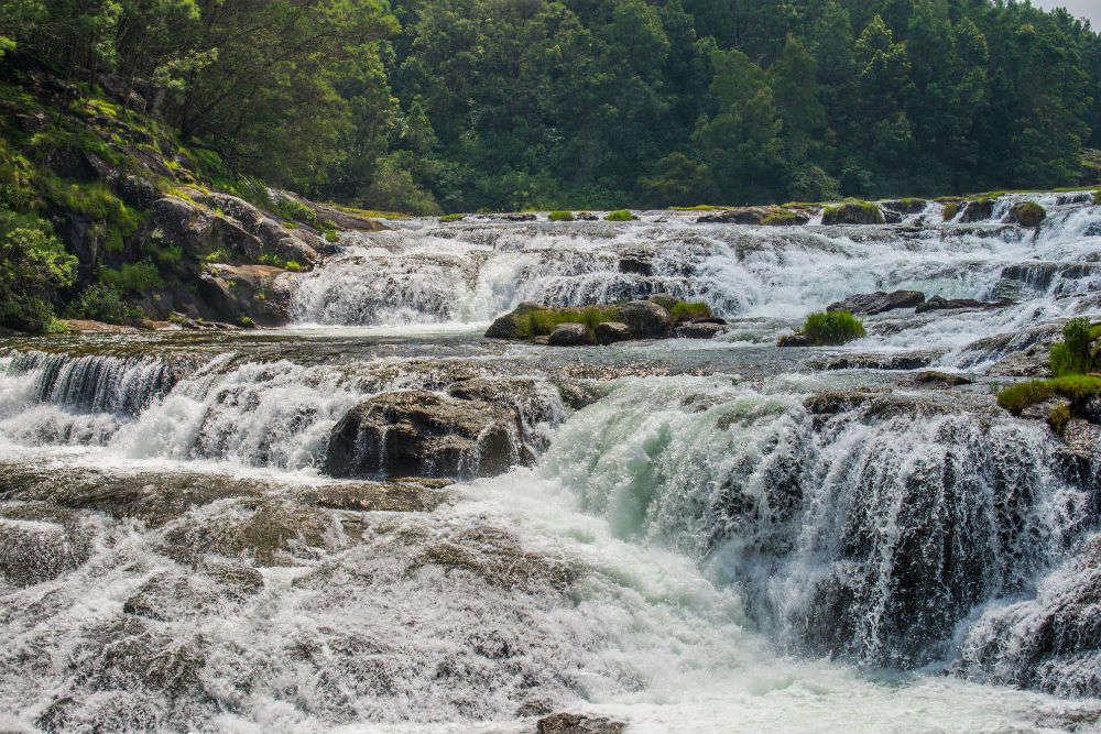 Pandikuzhi Waterfalls