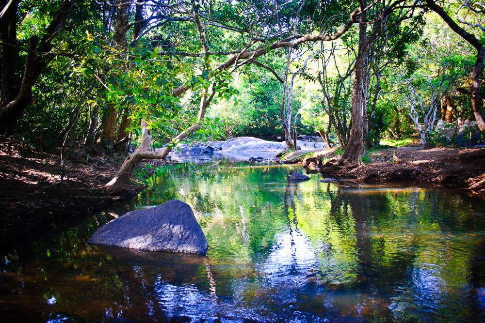 Explore the Kuruva Islands on bamboo rafts