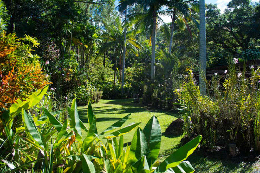 5 things worth doing while in Fiji