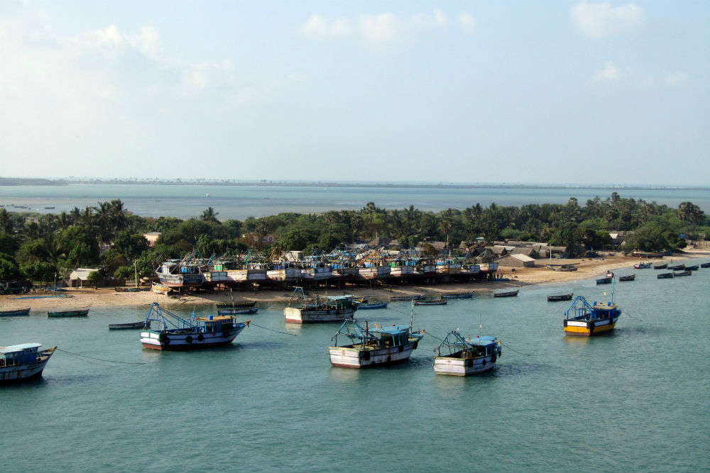 10 things to do in Rameshwaram that you must indulge in