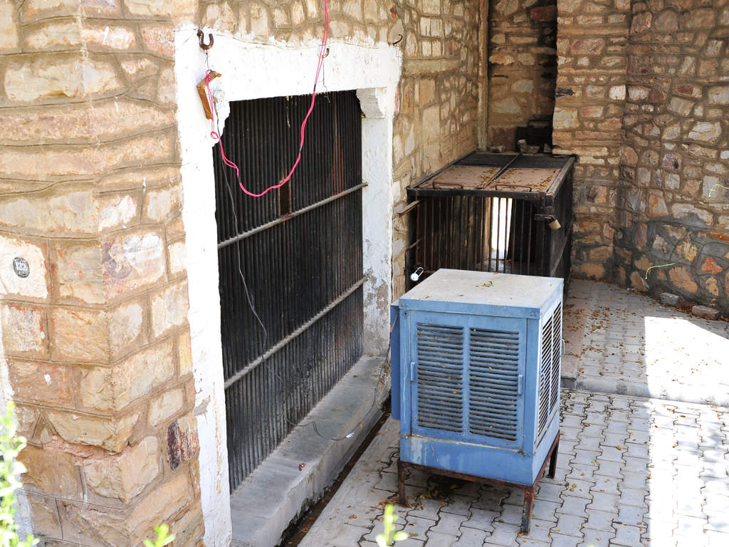 cooling effect jaipur zoo Zoo beats heat with coolers sprinklers