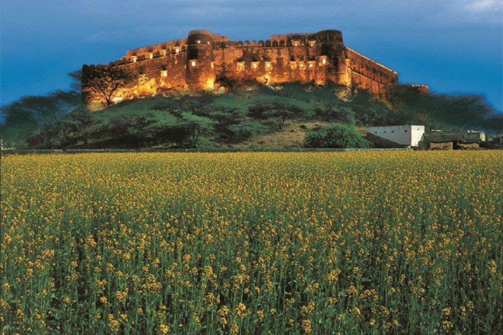 The must-visit attractions in and around Sariska