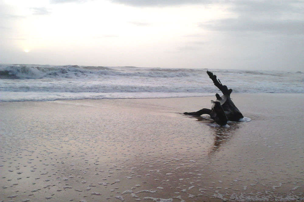 Exotic, pretty beaches in Karnataka for sea enthusiasts