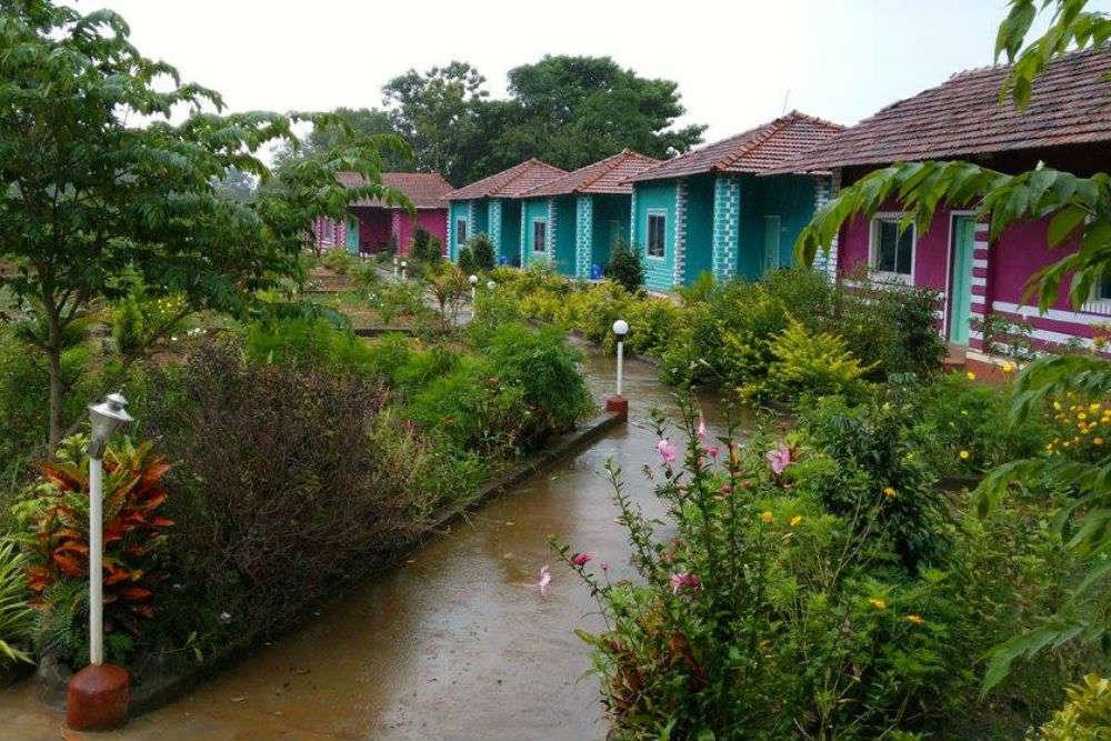 Dandeli Kingfisher Jungle Stay
