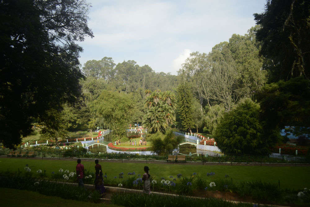 Places to visit in Coonoor for a memorable holiday