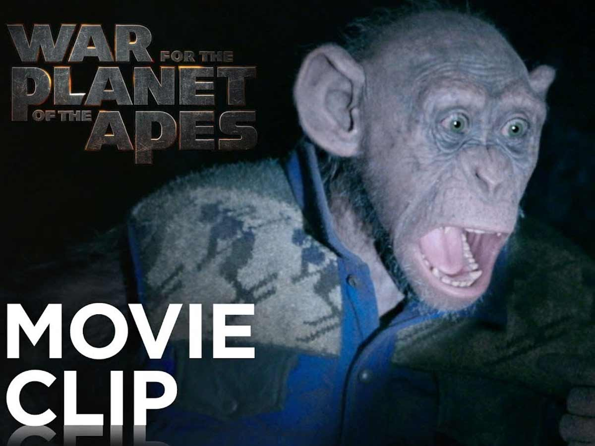 war-for-the-planet-of-the-apes-bad-ape-and-maurice-clip