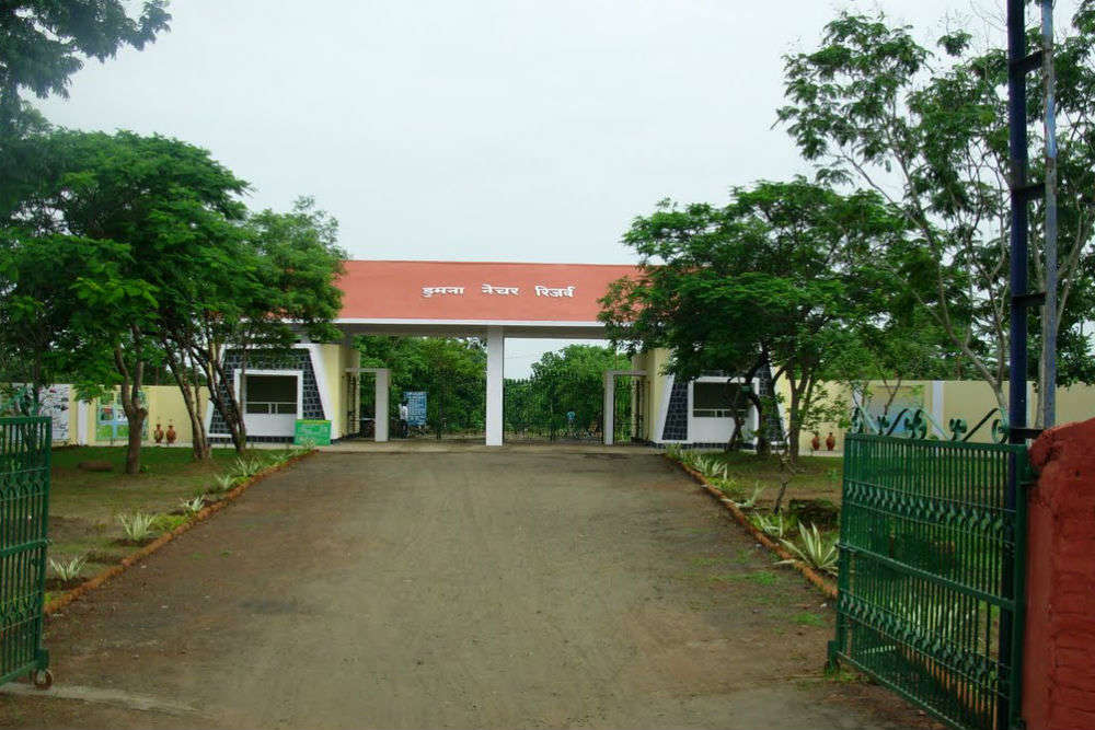 Dumna Nature Reserve Park
