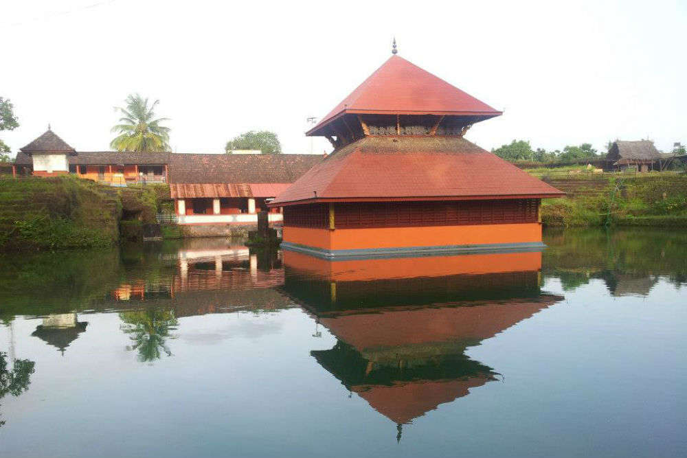 Meet Babiya—the vegetarian crocodile that guards a temple in Kerala! Yes, seriously.