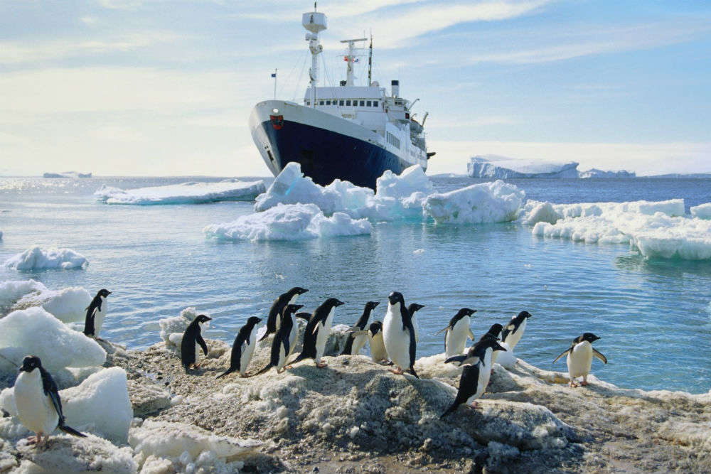 Now you can travel to Antarctica in an Indian cruise