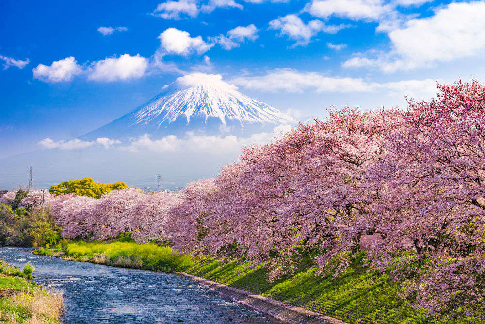 Japan visa rules to be simplified for Indian travellers from January 1, 2018