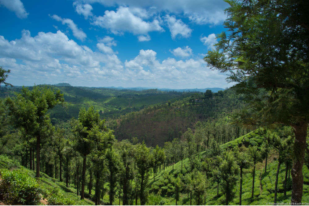 Eco-tourism to be developed at the Tropical Gene Pool Garden in Nilgiris