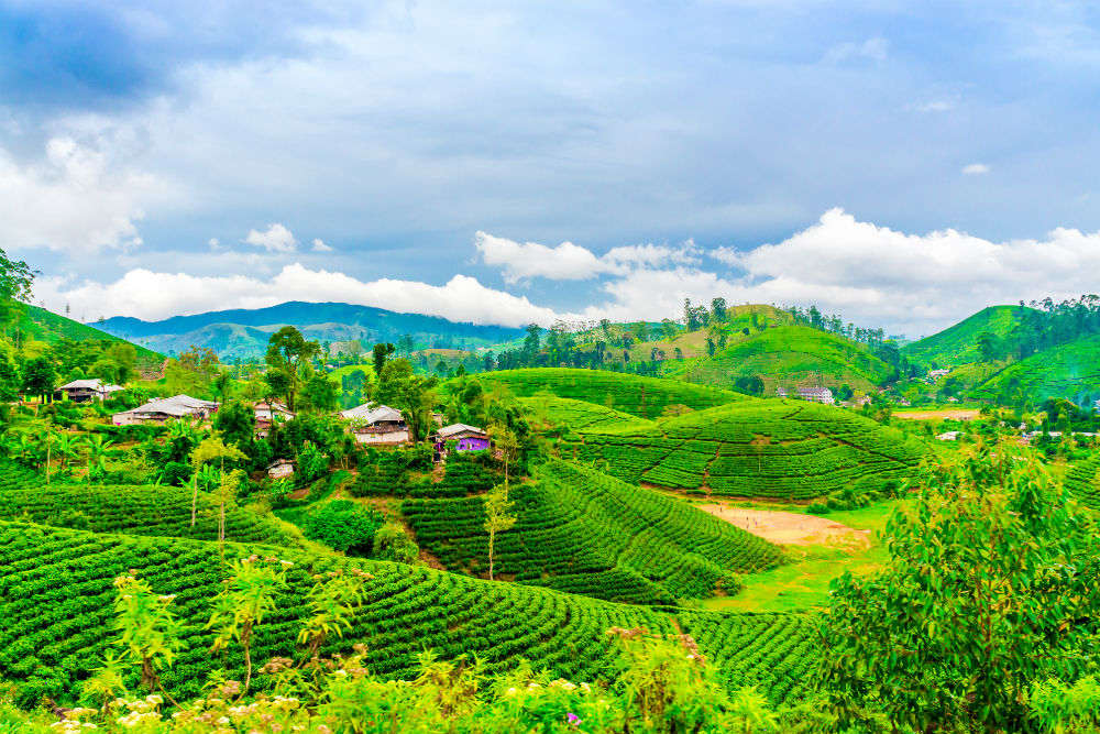 5-day tourism festival to begin in Darjeeling from 27 December