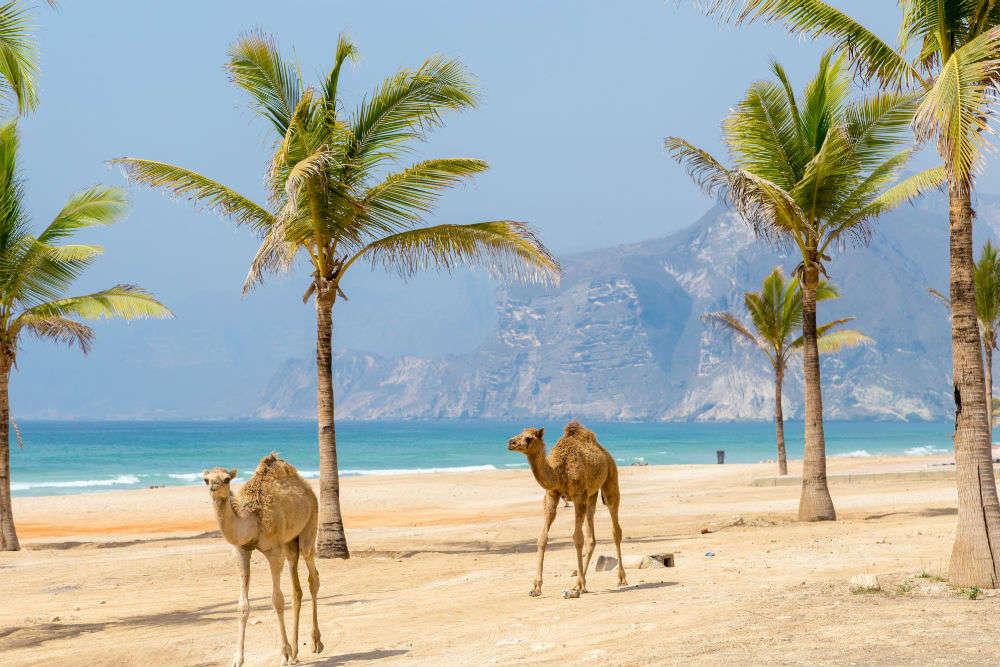 United Arab Emirates, 70 world delegates unite for promoting global cultural tourism