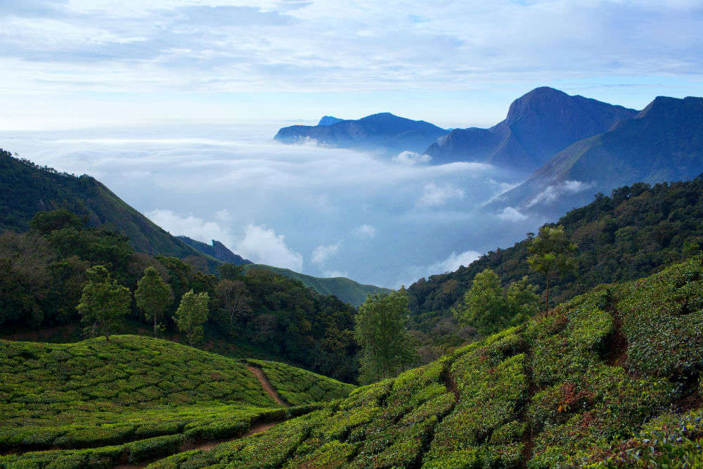 Kerala tourism goes overseas for 3 months to attract foreign tourists
