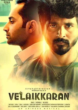 Tamil Movie Love Wrinklefree 1 Mp3 Download