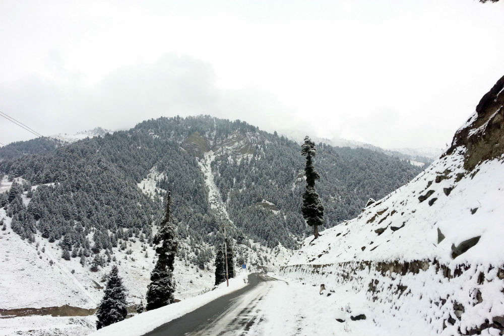 Sonmarg a huge disappointment this winter season; snow and inadequate facilities send tourists back