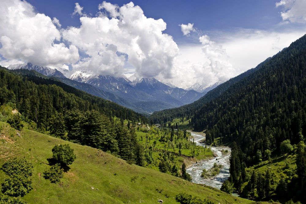 Jammu and Kashmir requests Tamil Nadu to visit, calls it a safe tourist destination