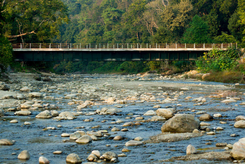 Now a trip to Jim Corbett National Park will be costlier, here is why