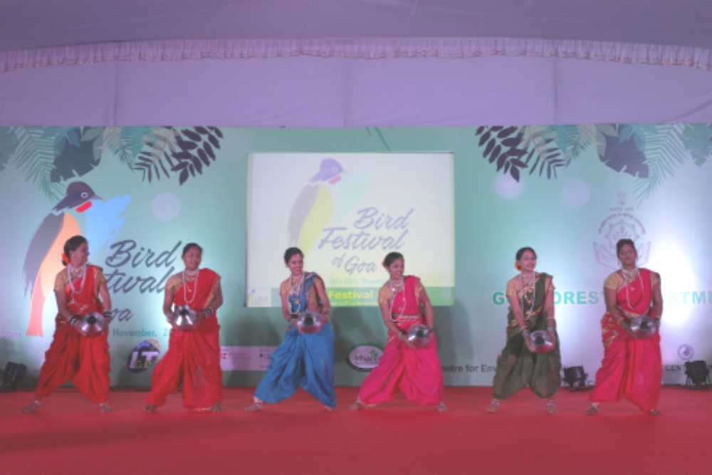 Second edition of the Goa Bird Festival to be organised from January 12th to 14th