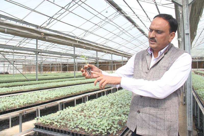 Farmers gain from Israeli agriculture technology | Ahmedabad News