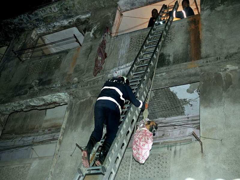 Vidyavihar: Part of staircase collapses in Vidyavihar, Mumbai   Mumbai News