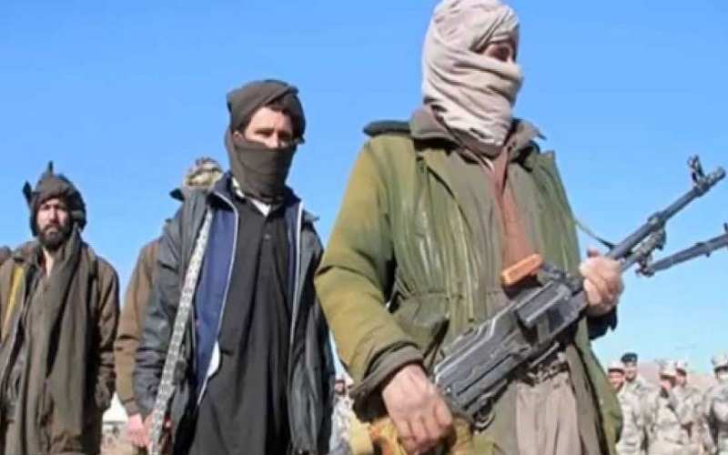 the haqqani network terrorists or insurgents It came as both the insurgents and the islamic state group have escalated their attacks on kabul what is the haqqani network the japan times ltd.