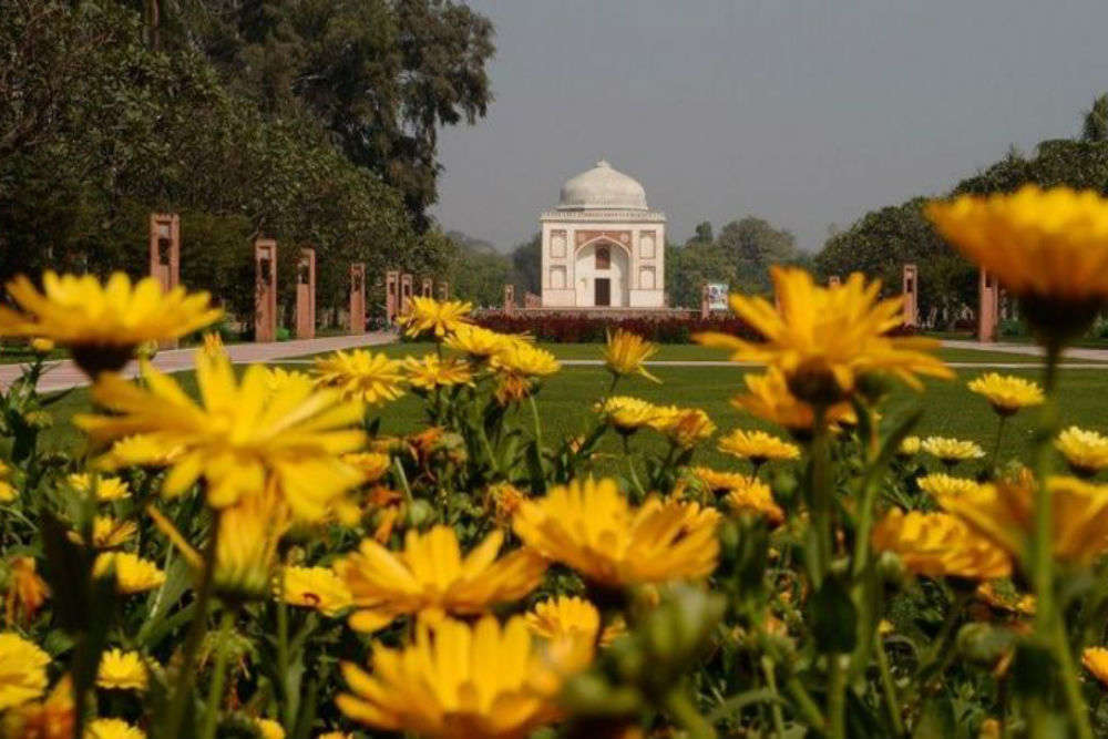 Mughal Garden in Delhi reopens as a public park
