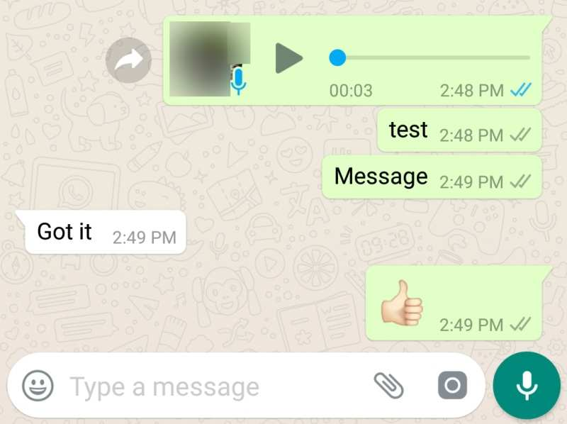 This WhatsApp hack makes those Blue Ticks useless - Apps