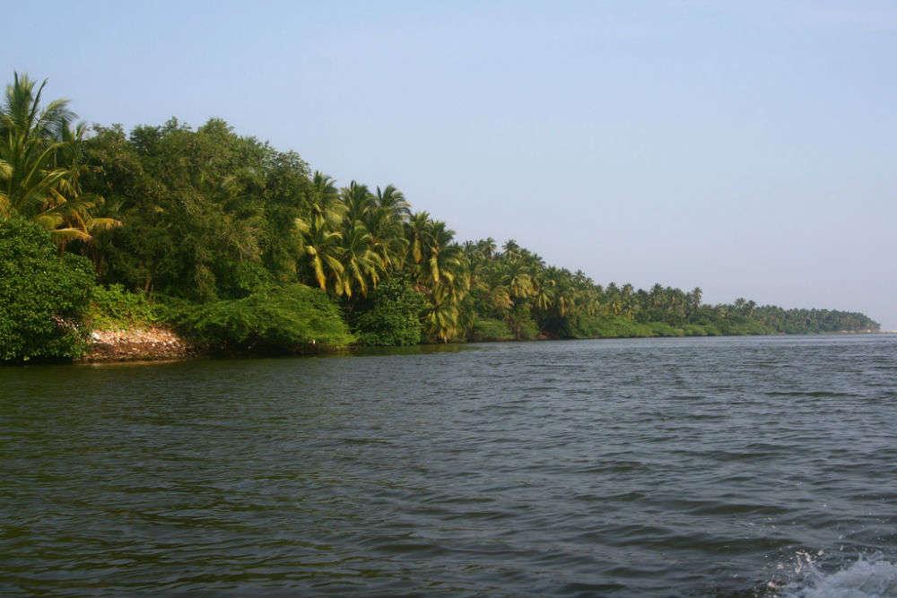 Puducherry's Kirumampakkam Lake to turn into an eco-friendly tourist spot from April 15