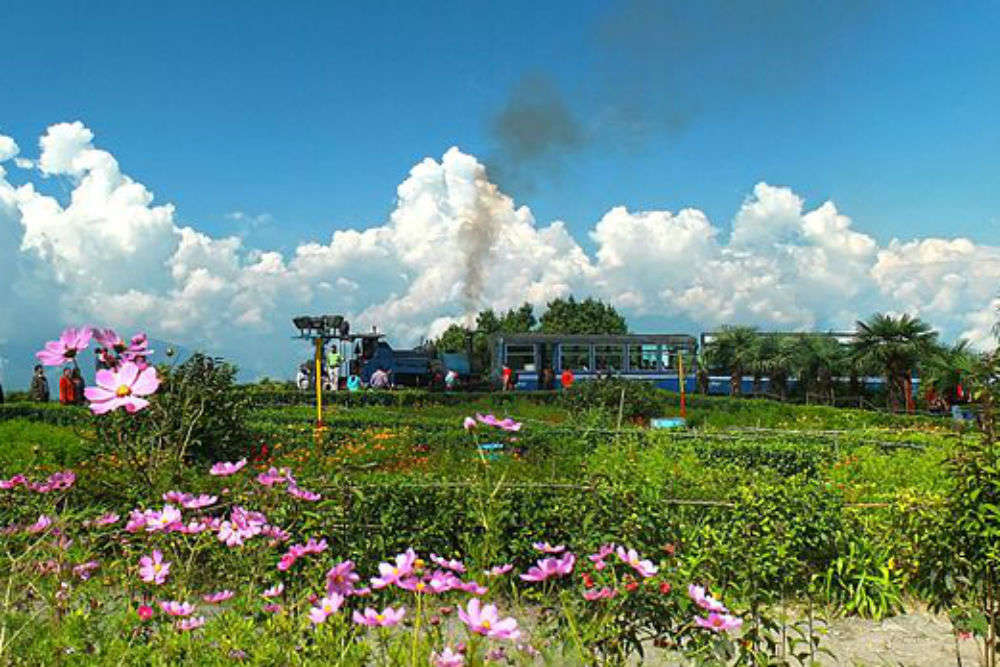 Darjeeling's toy train to soon have a special tourist route via tea gardens