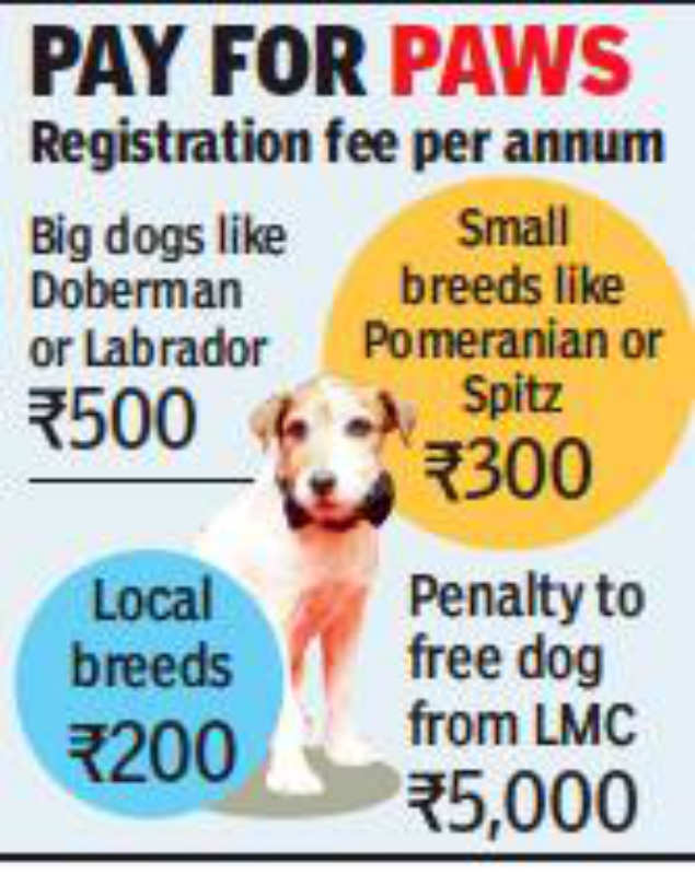 LMC: Register your pet dog by May 31 or LMC will take it | Lucknow