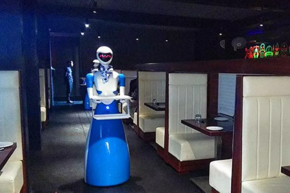 Robots serve food at this one-of-its-kind restaurant in Chennai