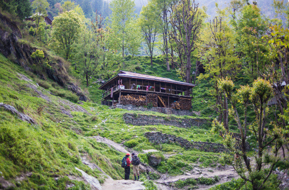 Malana is more than Malana Cream, and here's why
