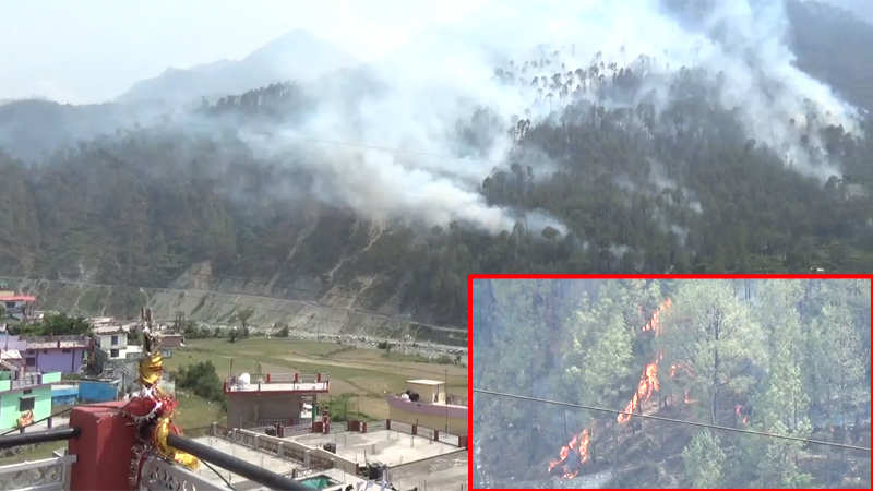 70-hectares-of-forests-lost-in-uttarakhand-fires-in-2-days