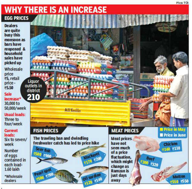 Eggs back in business   Kochi News - Times of India