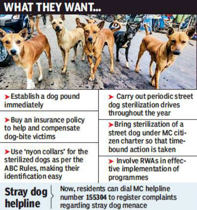 Involve RWAs to curb stray dog menace, residents suggest MC