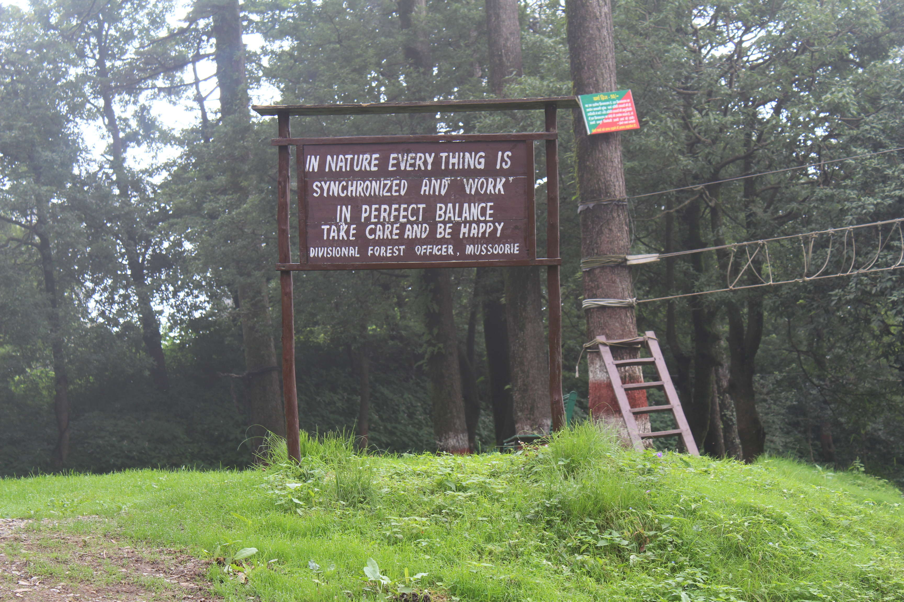 Exciting things to in Dhanaulti, the less explored hill station of Uttarakhand