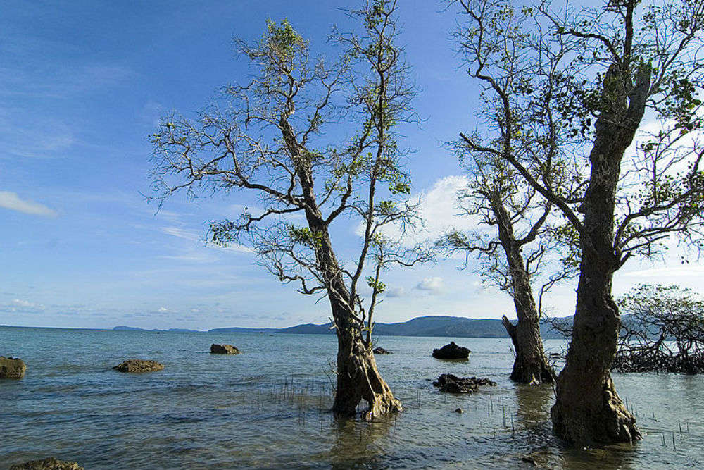 5 things you should not miss doing in the Andaman Islands